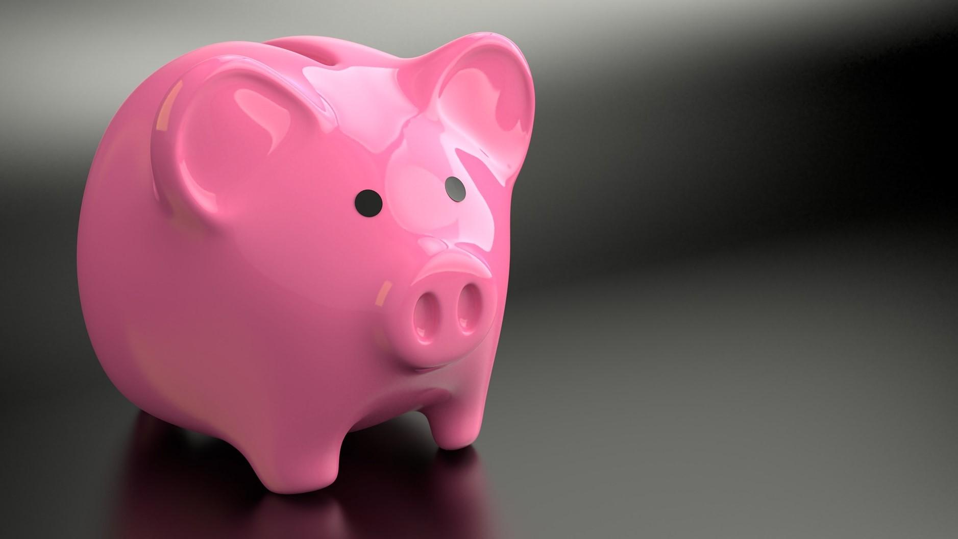 将来に向けて投資や預金ができる (2)